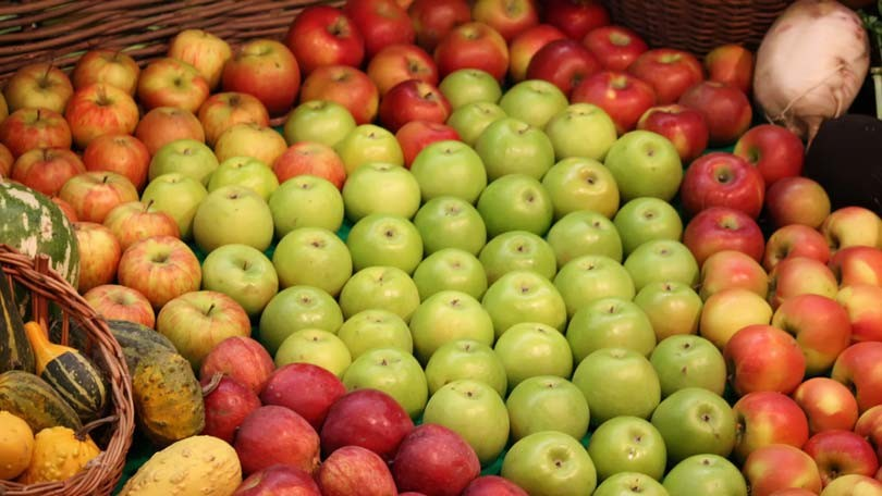 Types of Apples – A Great Source of Vitamin C