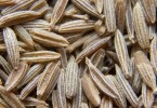Cumin –  Used for Millennia as a Medicinal Plant