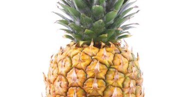 Pineapple – Trivia and Information