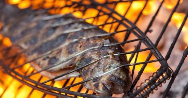 The Best Way To Barbecue Fish – It Starts with Fish Selection