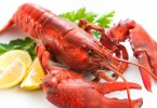 Types of Lobsters – Clawed and Spiny Lobster