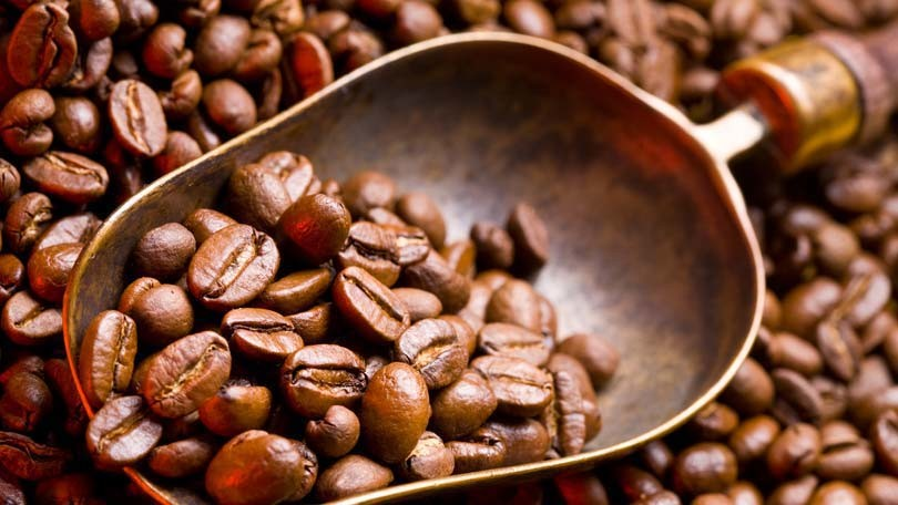 Effect of Coffee Grounds on Soil