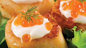 Scallops – Sea, Pink and Bay Scallop Information