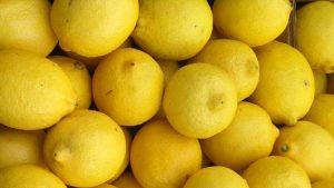 Lemons and a Lemon Bar Recipe