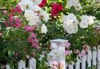 Garden Accents – Pots, Planters, Trellises