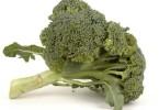 Planting Broccoli – A Nourishing and Versatile Vegetable