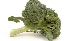 Planting Broccoli – A Nourishing and Versatile Vegetable