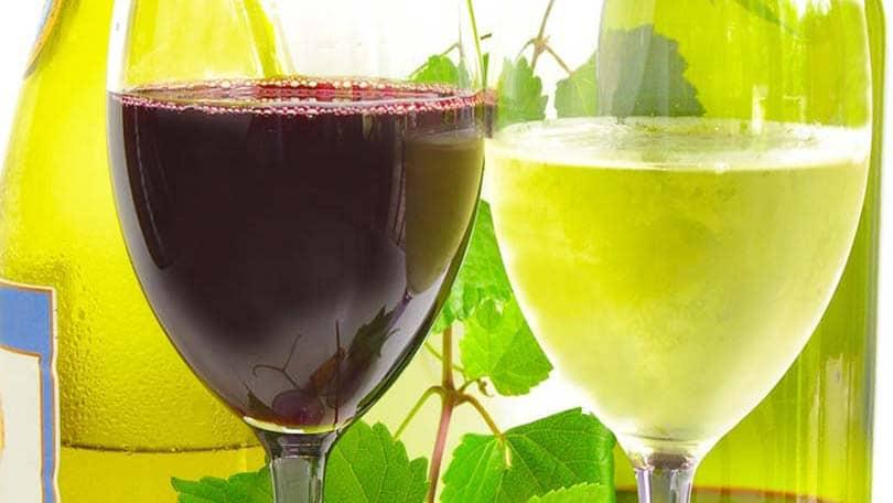 wine-19