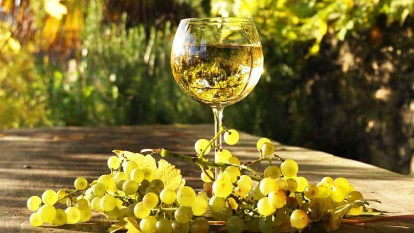 wine-82