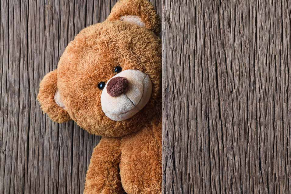 Picture of a Brown Teddy Bear