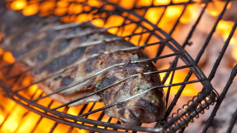 the best way to barbecue fish  it starts with fish selection