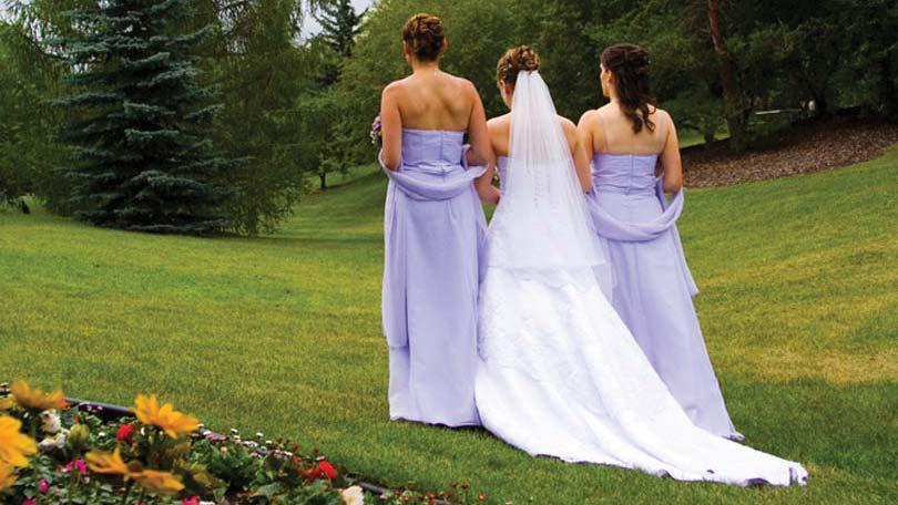 Simple Yet Elegant Wedding Dresses: Selecting Something Simple Yet Elegant